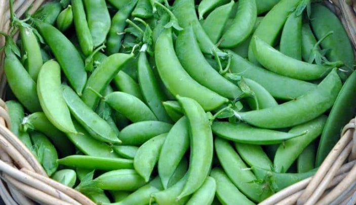 Are sugar snap peas ok for rabbits