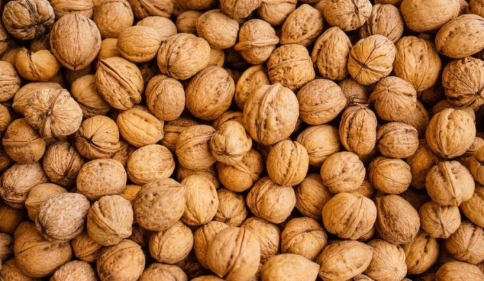 Are walnuts safe for rabbits