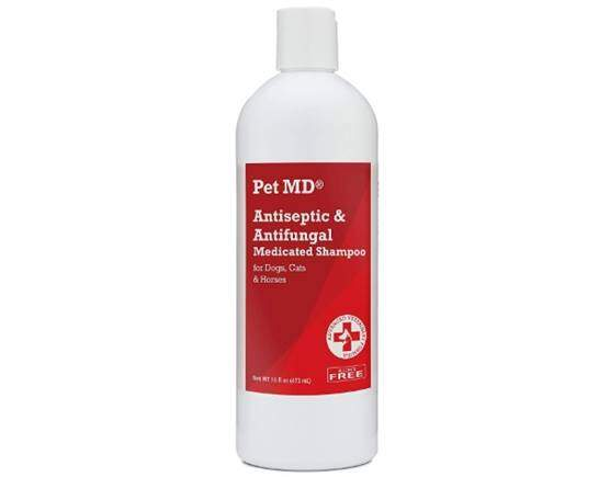 Pet MD - Antiseptic and Antifungal Medicated Shampoo for Dogs, Cats and Horses with Chlorhexidine and Ketoconazole