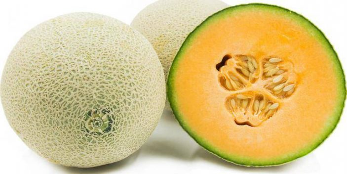 Can cats have cantaloupe. Why do they love them