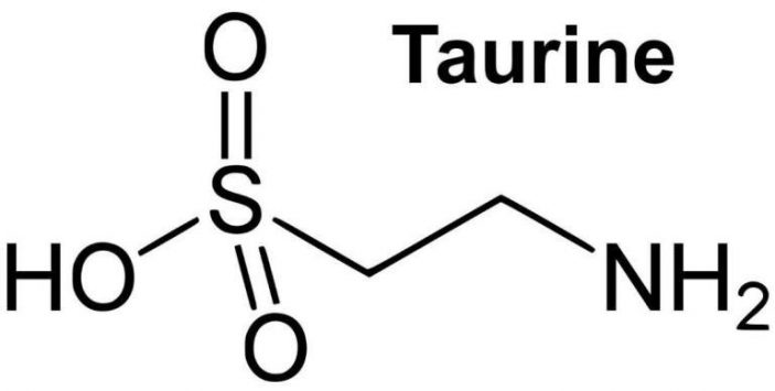 Do cats need Taurine?
