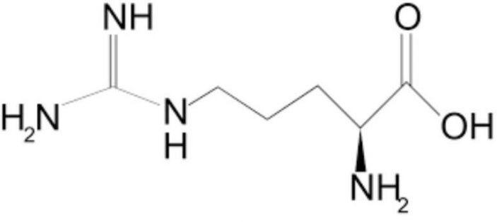 L-arginine amino acids - Do cats need it