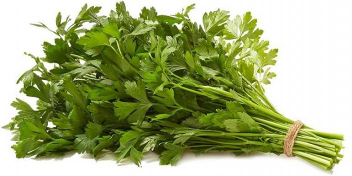 Can cats eat parsley
