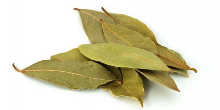 Can dogs eat bay leaves?