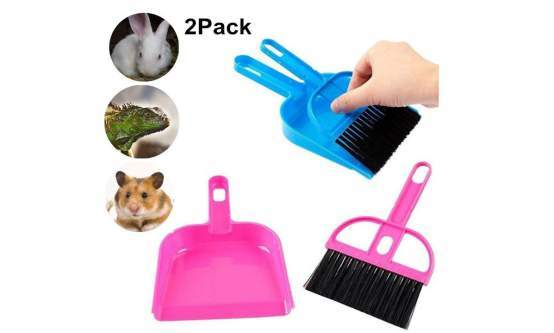 Mini Reptile Sand Scooper Set