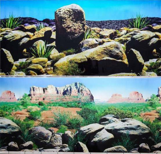 24 (60cm) Double Sided Aquarium Background Backdrop Fish Tank Reptile Vivarium Marine