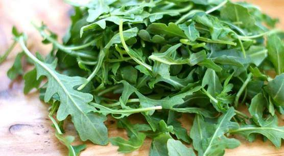 Arugula or rocket salad