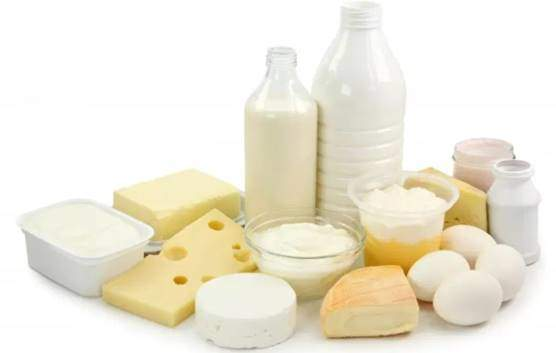 Cheese, milk, ice cream, and dairy products