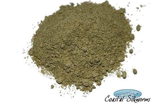 Coastal Silkworms 0.5 LB Powdered Silkworm Food (Mulberry Food) Silkworm Chow