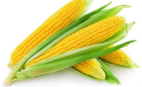 Corn and sweetcorn