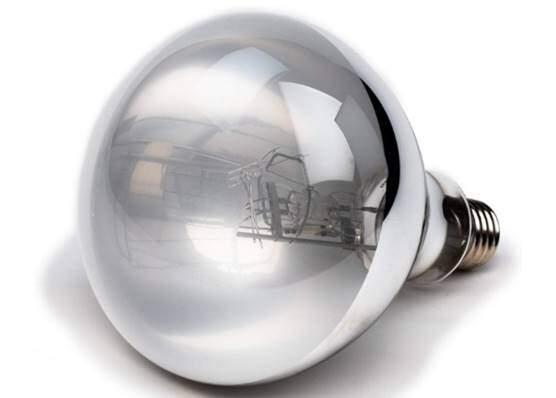 Evergreen Pet Supplies 100 Watt UVA UVB Mercury Vapor lamp