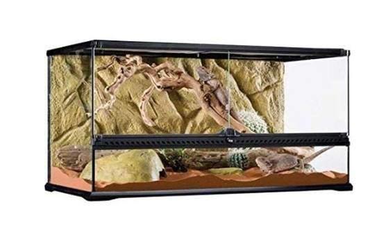 Exo Terra AllGlass Terrarium - 36 x 18 x 18 Inches