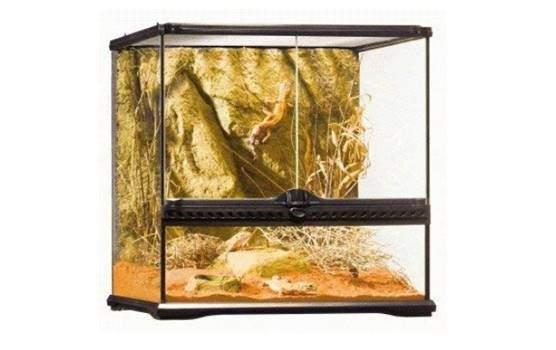 Exo Terra Allglass Terrarium small