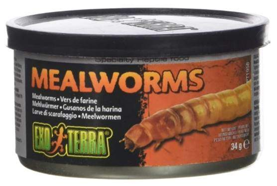 Exo Terra Reptiles Canned Food, Mealworms