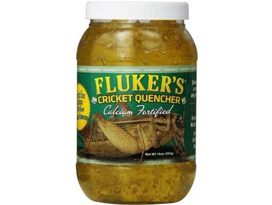 Fluker's Cricket Quencher
