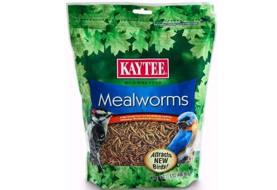 Kaytee 100505655 Mealworms, 17.6 oz