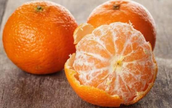 Orange and mandarin oranges