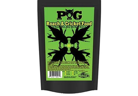 Pangea Roach and Cricket Food