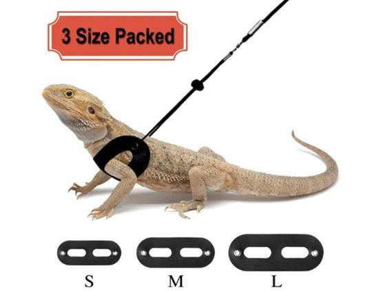 RYPET 3 Packs Bearded Dragon Harness and Leash Adjustable(S,M,L)