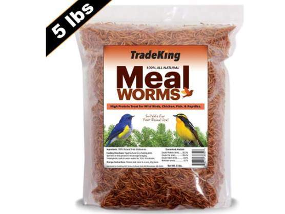 TradeKing 5 lb Dried Mealworms - High Protein Treat