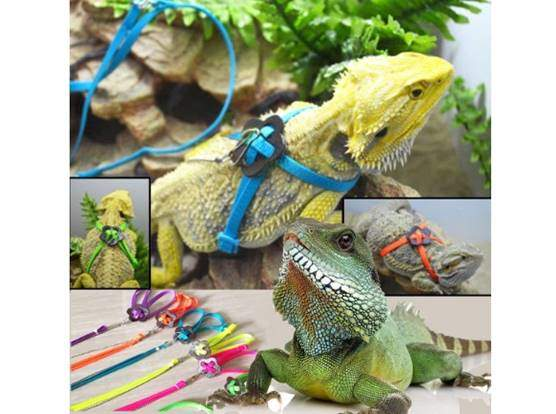 Tzou Adjustable Reptile Lizard Harness Leash