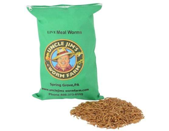 Uncle Jim's Worm Farm Live Mealworms (2000 Count