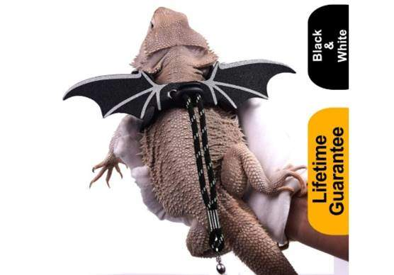 WATFOON Adjustable Bearded Dragon Lizard Comfort Leather Leash Harness with Cool Wings