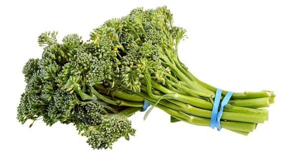 Can rabbits eat broccolini