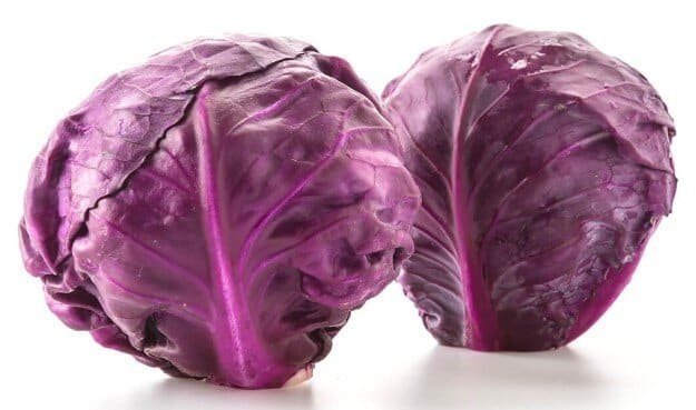 Can rabbits eat red or purple cabbage