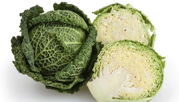 Can rabbits savoy cabbage