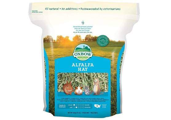 Oxbow alfalfa hay for rabbits