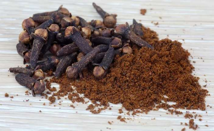Can dogs eat cloves