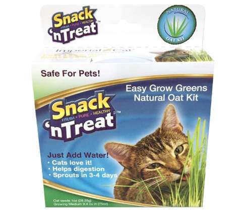 Imperial Cat Easy Grow Greens Natural Oat Grass Kit