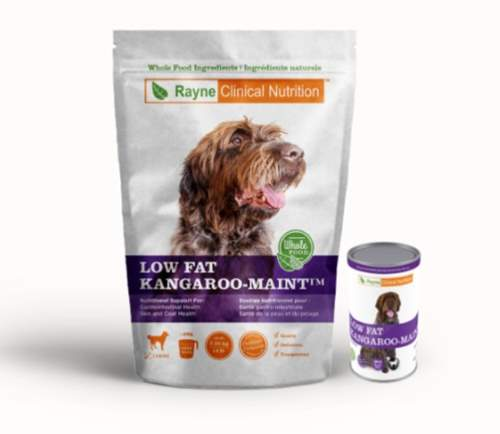 Rayne kangaroo dog food