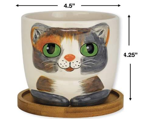 Window Garden - Cat Grass Growing Kit with Kitty Pot Planter