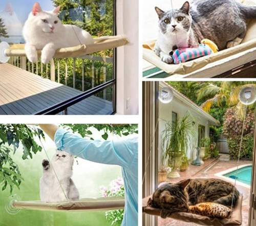 Cats Hammock Window Mounted Bed Sunny Seat Kitten Hanging Bed Bubble Looking Dia 30 CM,Catnip Bonus Pecute Cat Window Perches Newest Design Sturdy with Advanced Fram Suction Cup-Hold Pets Up 10KG