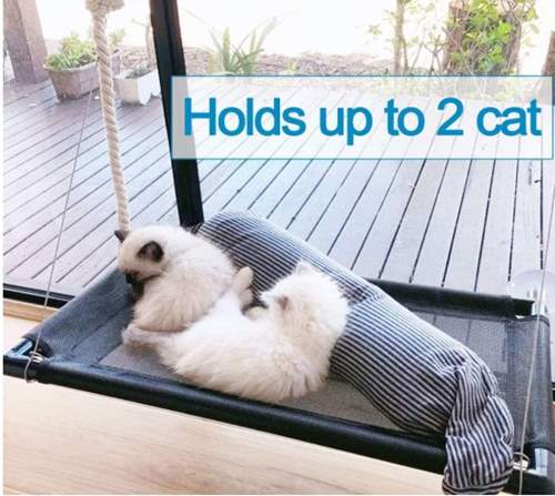 Camlinbo Cat Hammock Bed, Cat Window Perch for Large Big Cat Shelves