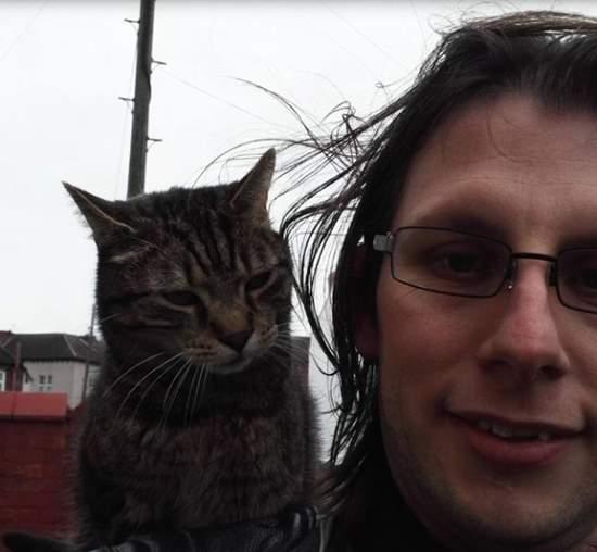 Cat perching on shoulder - sevish885 - Imgur