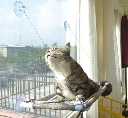 Pefuny Cat Window Perch, Cat Hammock Window Seat, Space Saving and Safety Window Mounted Cat Bed for Large Cats