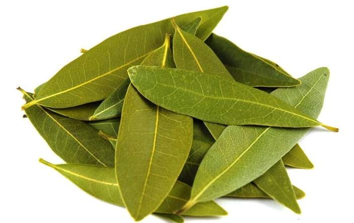 Can rabbits eat bay leaves
