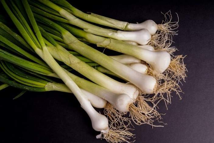 Can rabbits eat scallions