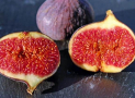 Can Eat Figs and Fig Newtons