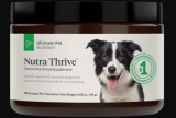 Does Your Dog Need Supplements?